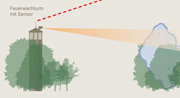 MIL, Landesbetrieb Forst Brandenburg, Infografiken